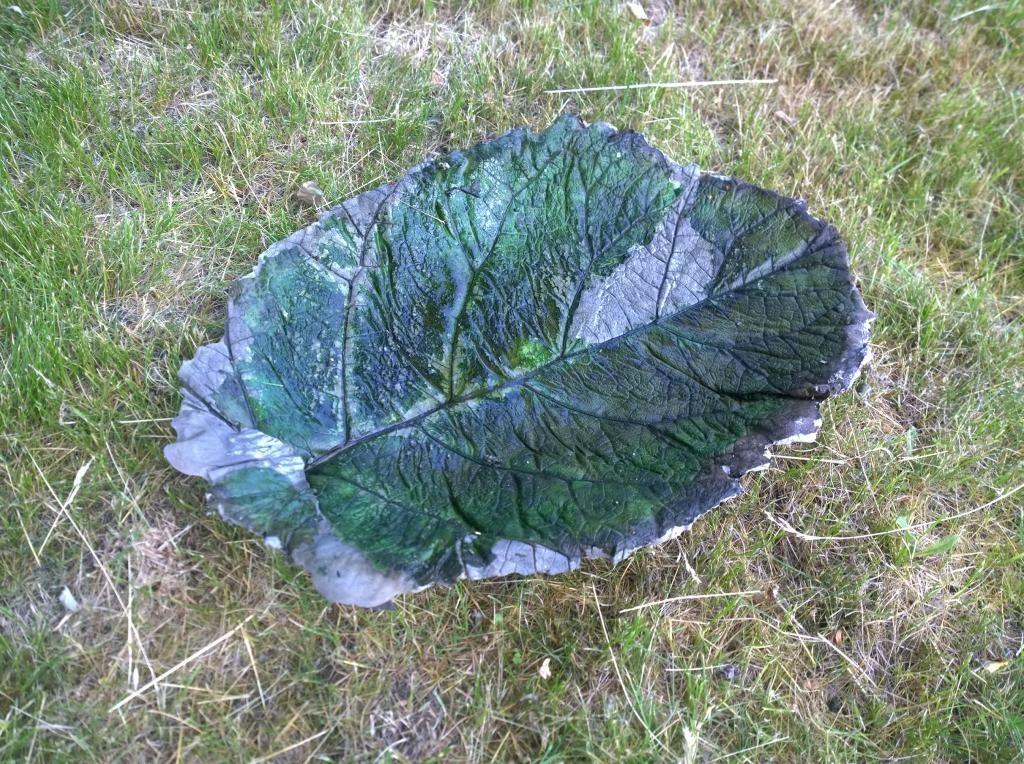 Лист лопуха со временем высохнет и его можно будет удалить