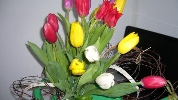 Букет из тюльпанов на 8 Марта — Фото