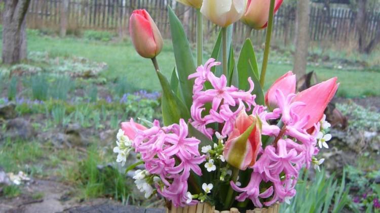 Цветочная композиция из живых цветов: Фото