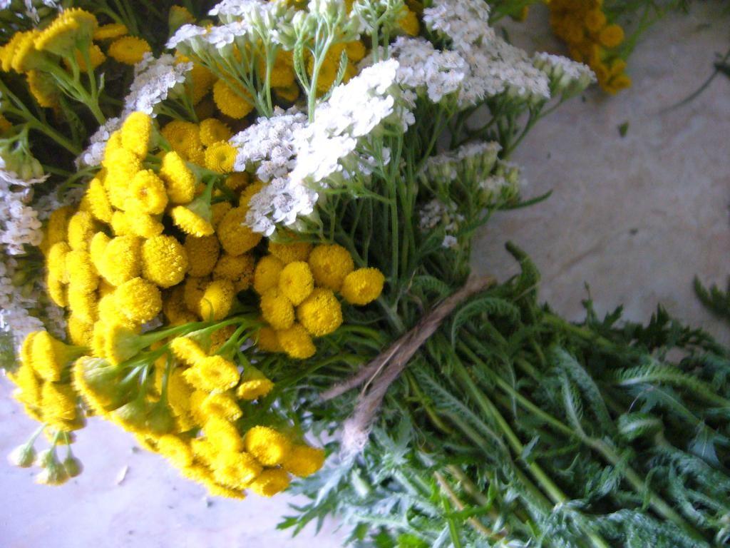 Прикладываем цветы вдоль букета