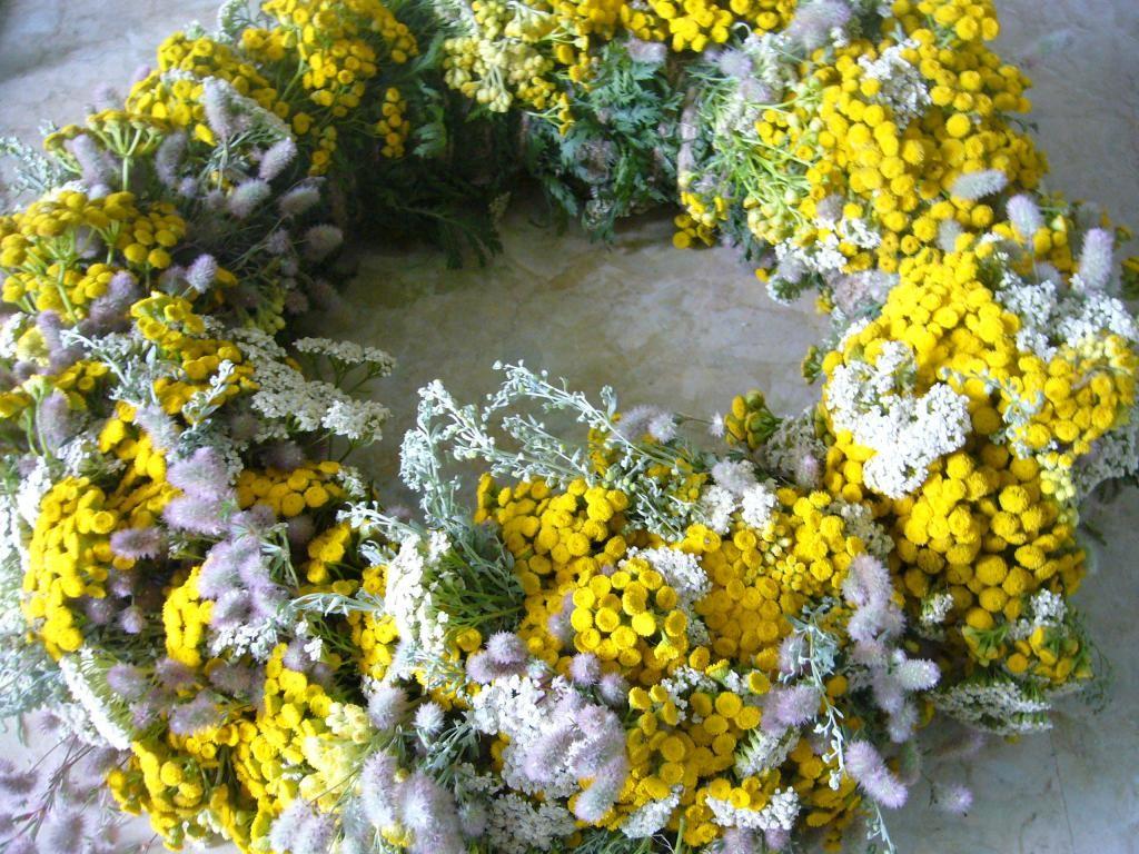Венок из цветущих трав