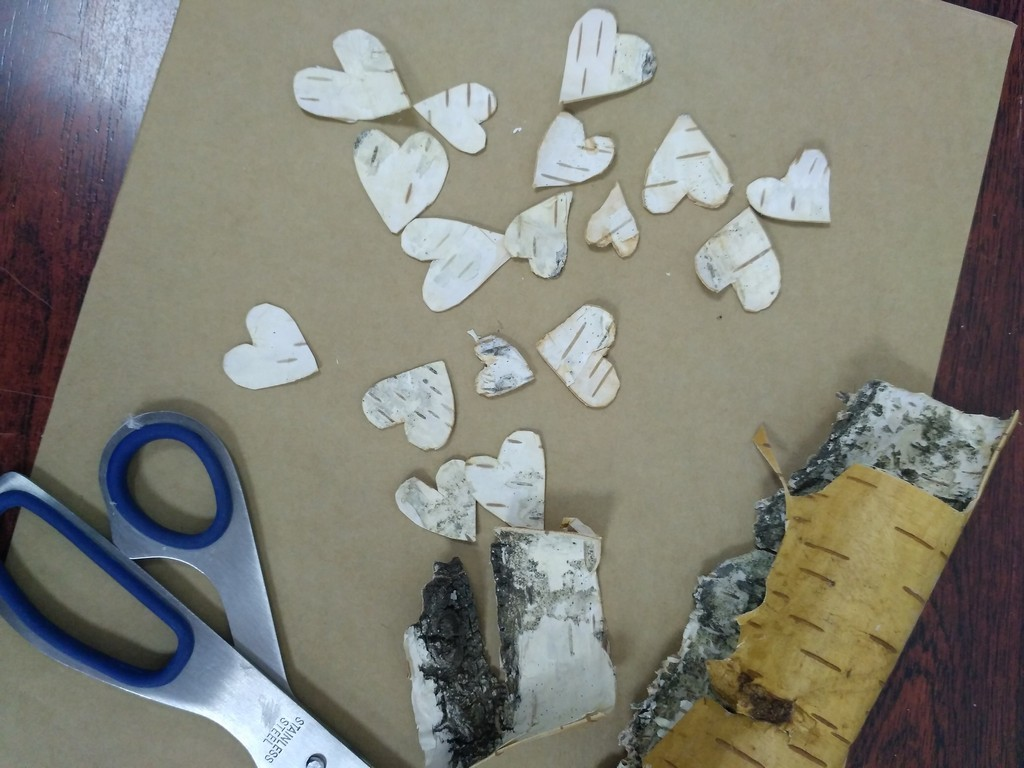 Сердечки из березовой коры